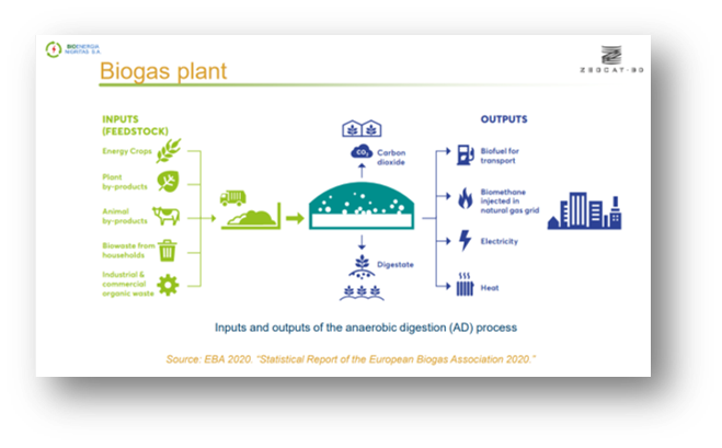 Application of ZEOCAT-3D technology in the biogas industry and beyond - Themistoklis Sfetsas, QLAB